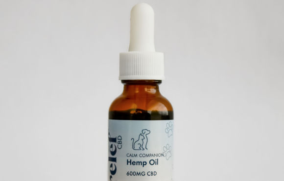 Calm Companion Hemp Oil Tincture